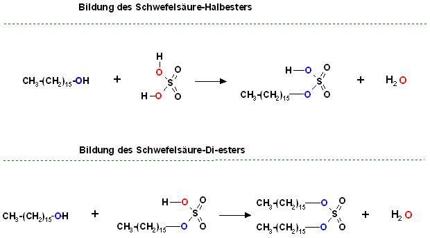 Schwefelsäure-halbester und Vollester Hexadecanol.JPG