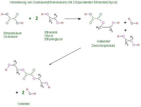 Veresterung von Oxalsäure(Ethandisäure) mit 2eq. Glycol(Ethandiol) res 3 zu 4.jpg