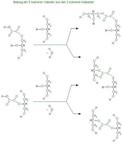 3 isomere Vollester der Oxalsäure(Ethandisäure) aus den 2 isomeren Halbester mit Glycerin res 2 zu 3.jpg