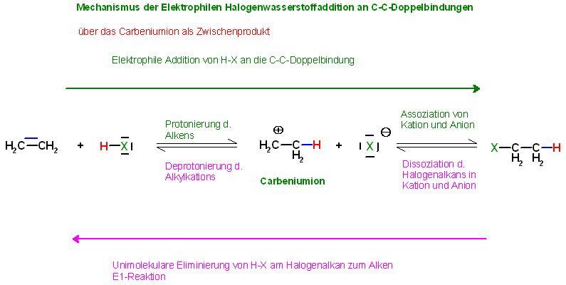 Mechanismus Elektrophile Addition und E1-Reakt. Ethen + H-X.JPG