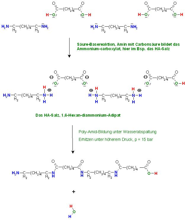 HA-Salz und Polyamidbildung.JPG