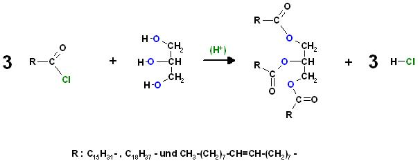 Fettsäurechloride + Glycerin.JPG