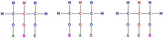 3 Konstitutions-Isomere Triglyceride ABC.JPG