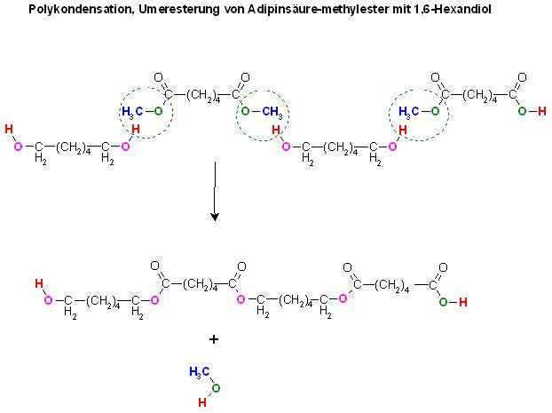 Polykondensation, Umeresterung von Adipinsäure-methylester mit 1,6-Hexandiol.JPG