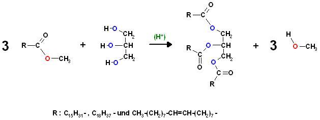 Fettsäure-methylester Glycerin Umesterung.JPG