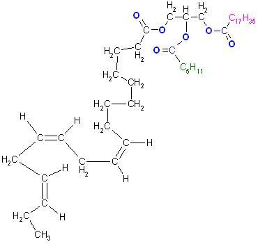 Triglycerid, Linolen-,Hexan-,Stearin-,.JPG