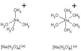 [Na(H2O)4-6]+.JPG