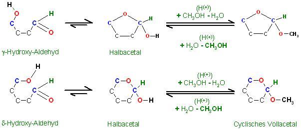 Gamma- und Delta-Hydroxy-Aldehyde Vollacetalisierung d. Halbacetale.JPG