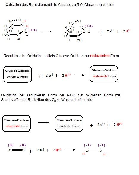 Redoxreaktionsteilgl. GOD und Glucose.jpg
