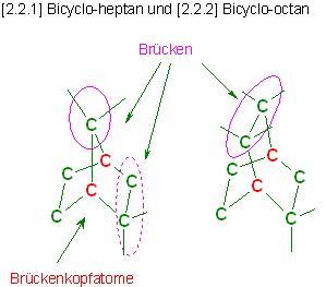 Bicyclen-Aufbau.JPG